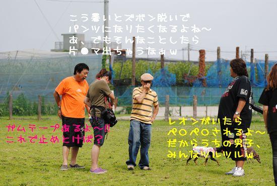 DSC_0094_20110708160930.jpg