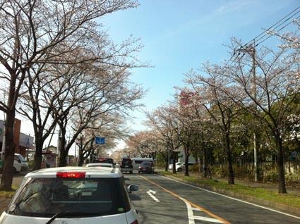 小山20130326
