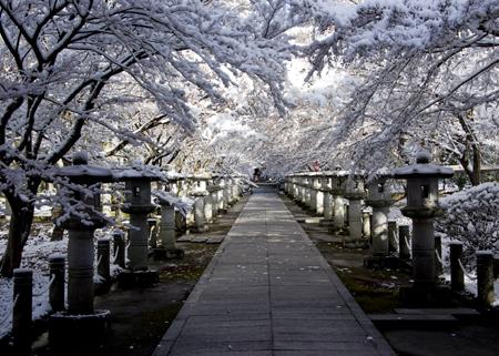 高山寺雪①