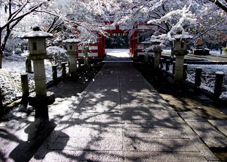 高山寺雪5