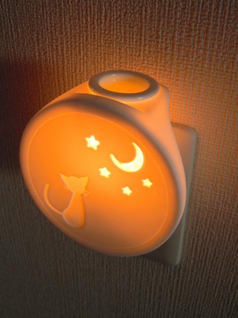 DSCN9260_convert_20110524165404.jpg