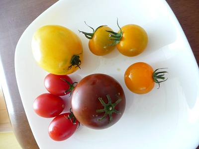 tomato 006
