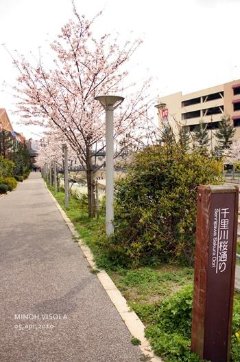 20100405-4.jpg