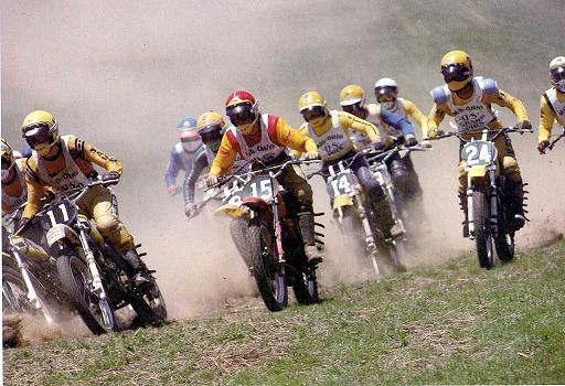 motocross_15.jpg