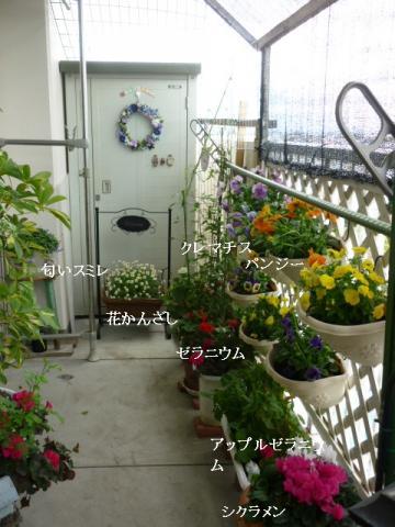 101花盛り
