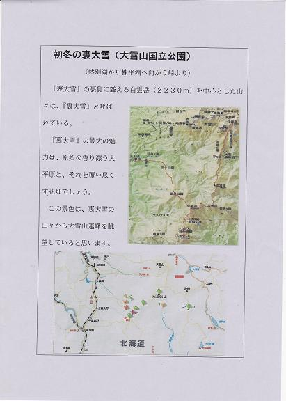IMG_20120208122717.jpg