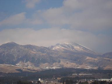 20110113.jpg