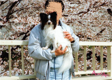 19960407-1.jpg