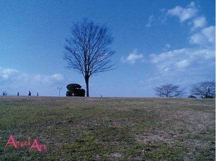 20070108-4.jpg