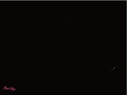 20130607-5.jpg