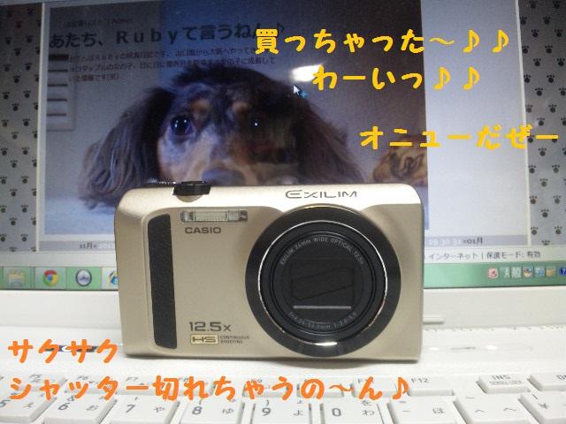 DVC00330_20130219162219.jpg