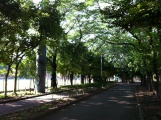 Park 072011 7