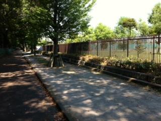Park 072011 2