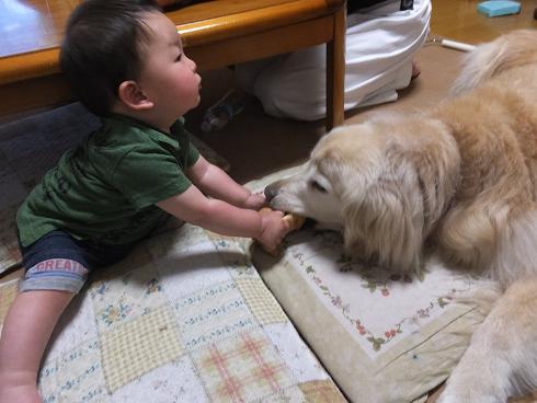 3_20130524105957.jpg