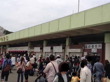 2012_04_15(4).jpg