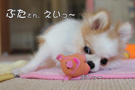 20111025_24.jpg