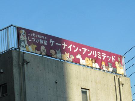 20111119_11.jpg