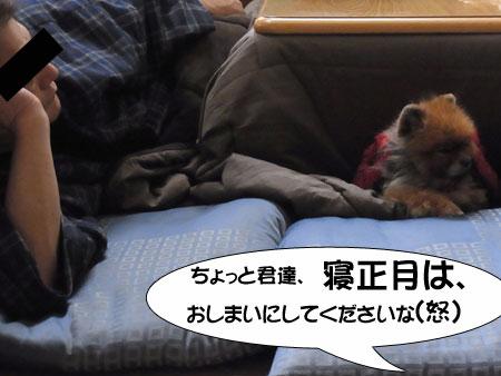 20120104_24.jpg