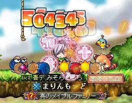 Maple101 (9)