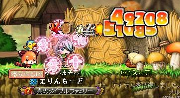 Maple101 (11)