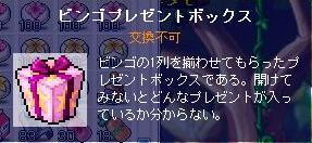Maple1111114.jpg