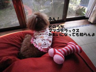 IMG_5323D