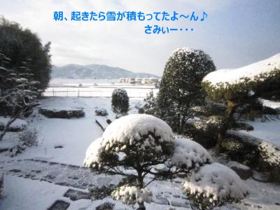 雪だよ~ん