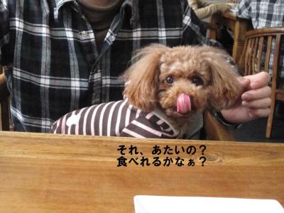 食べれる?