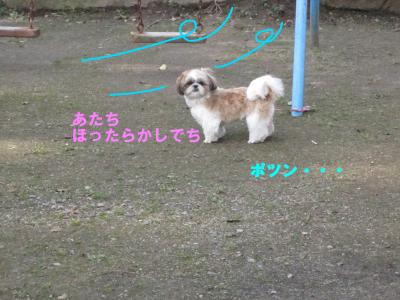 IMG_7699.jpeg