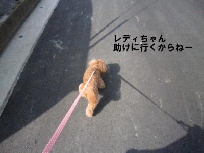 IMG_7961.jpeg