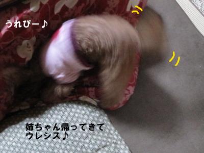 IMG_7979.jpeg