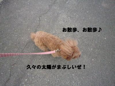 IMG_7991.jpeg