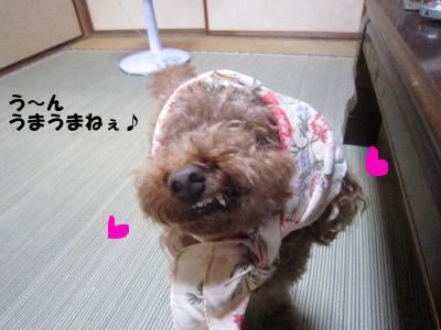 nashi6.jpeg