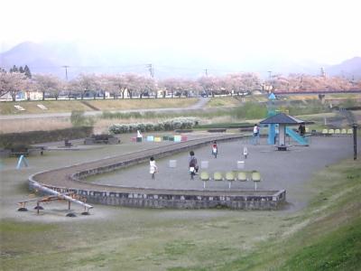 宮川の千本桜_2010/05/03