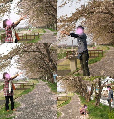 ぽぅちゃんと旦那様@宮川千本桜_2010/05/04