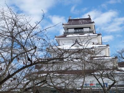赤瓦の鶴ヶ城天守閣(2011/01/03)