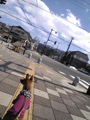 お散歩アクア@五之町かぎの辻ひろば(会津若松市内)