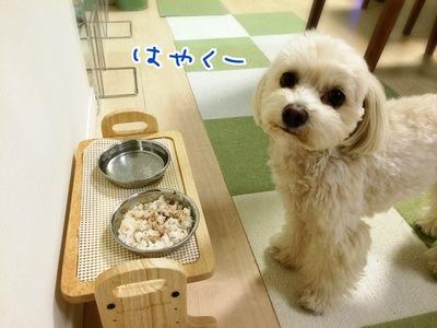 早く食べたいな