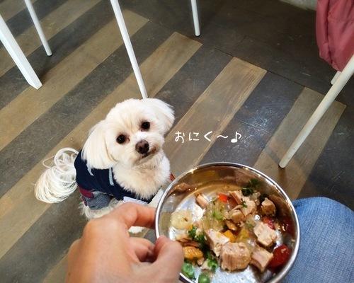 おにく食べます!