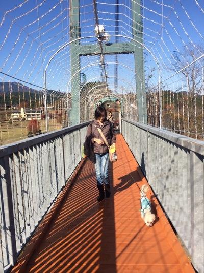 吊り橋渡ります