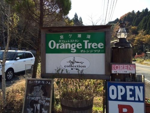 オレンジツリー看板