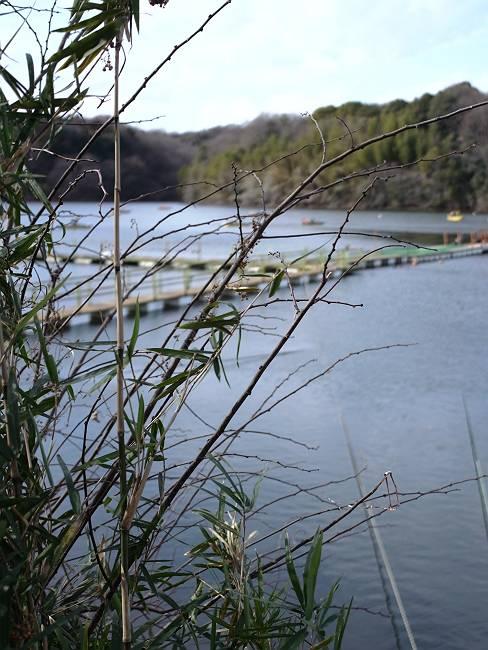 宮沢湖 6-s