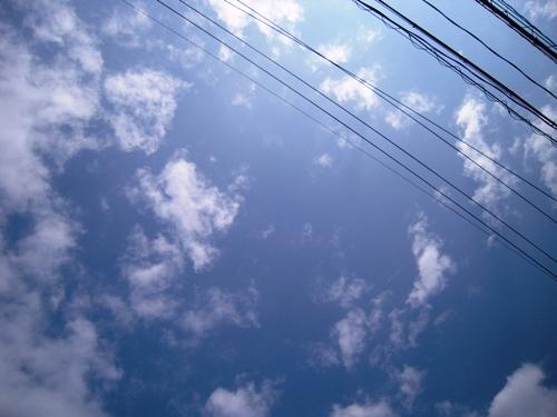 022_20110310141119.jpg