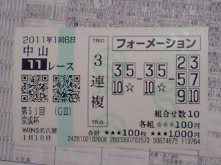 2011年01月16日中山11R京成杯