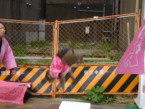 13-nakaku-w22.jpg