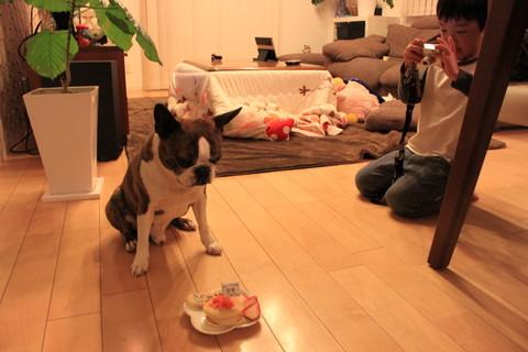 bisco誕生日 015