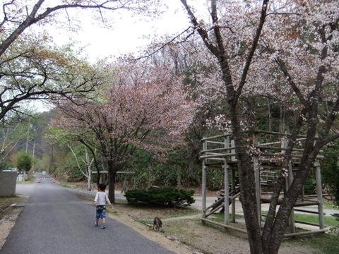 キャンプ広島 (17)