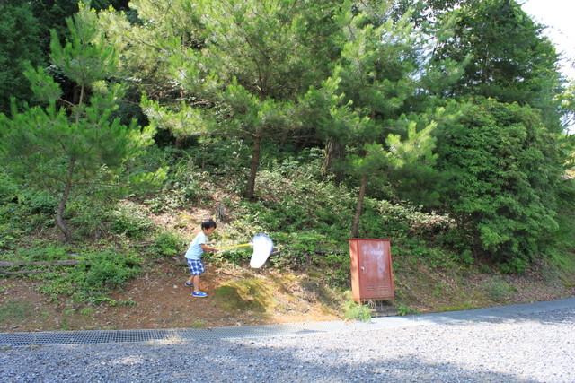 2013岡山キャンプ 566