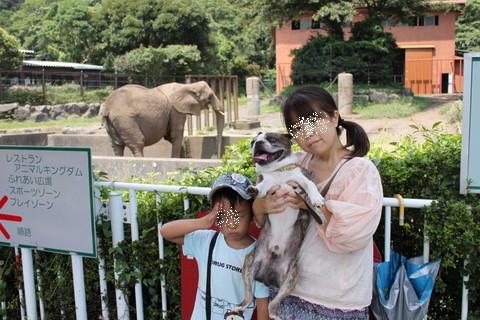 静岡旅行2013夏 234
