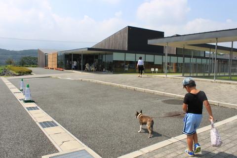 静岡旅行2013夏 687